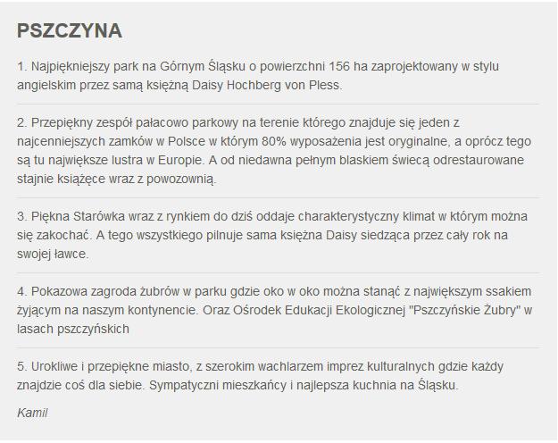 Fakty z Twojego Miasta. Zgłoszenie Pszczyny /RMF24