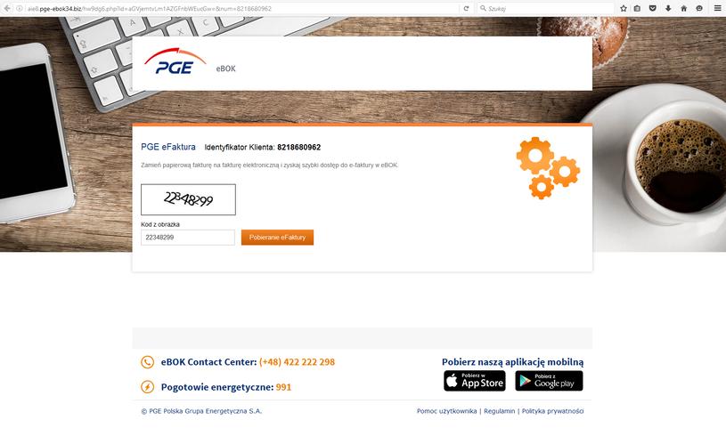 Fałszywa strona PGE /materiały prasowe