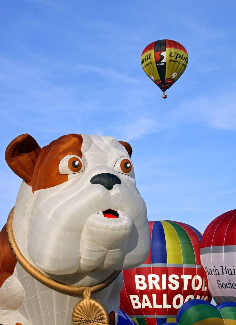 Festiwal balonów /123RF/PICSEL