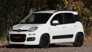 Fiat Panda na sterydach