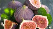 Figowiec pospolity, czyli figa