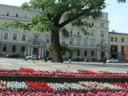Filmy będą promować miasta i regiony w Lublinie /RMF