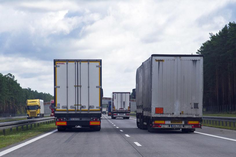 Firmy transportowe mają coraz większe problemy ze znalezieniem kierowców /Wojciech Stróżyk /Reporter