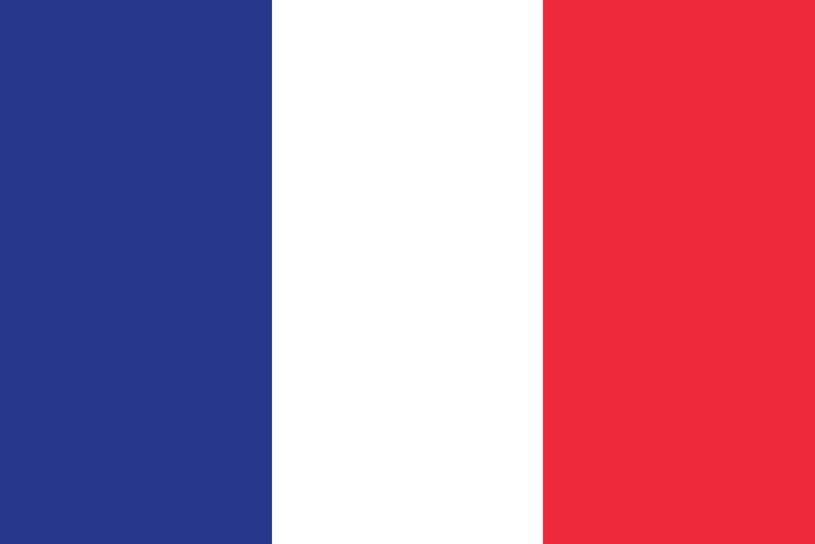 Flaga Francji /123/RF PICSEL