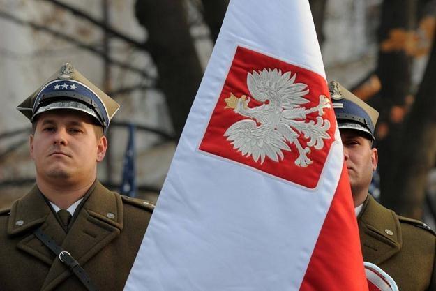 Fot. A. Stępień /Reporter