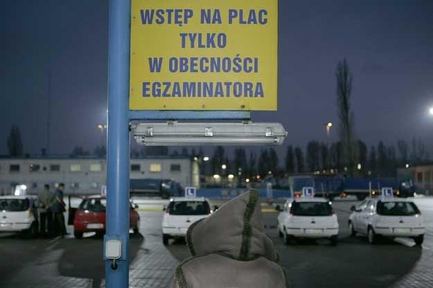 Fot. Jacek Wajszczak /Reporter