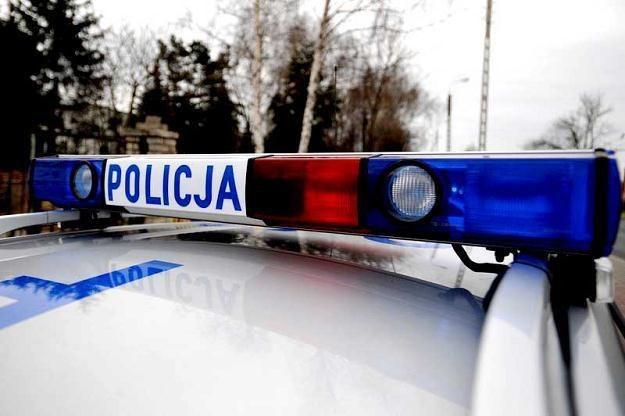 /fot. Przemysław Jach /Agencja SE/East News