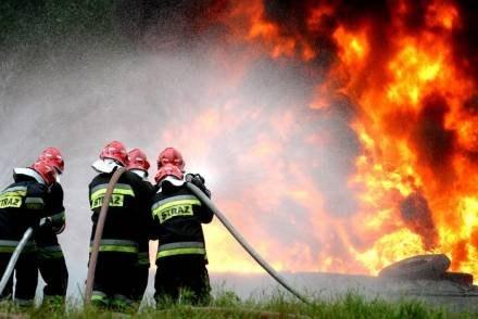 /fot. T. Zieliński /Agencja SE/East News