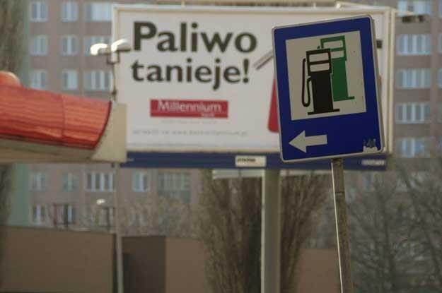 Fot. Włodzimierz Wasyluk /Reporter