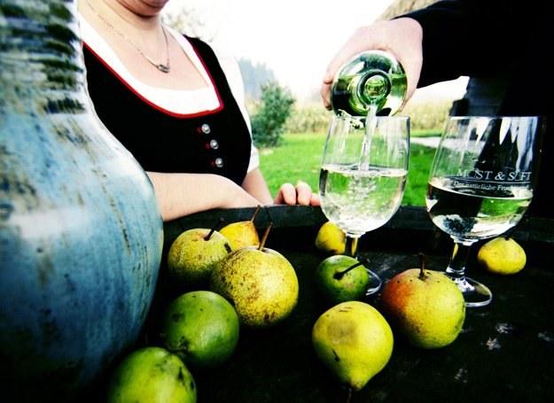 Foto: weinfranz.at /materiały prasowe