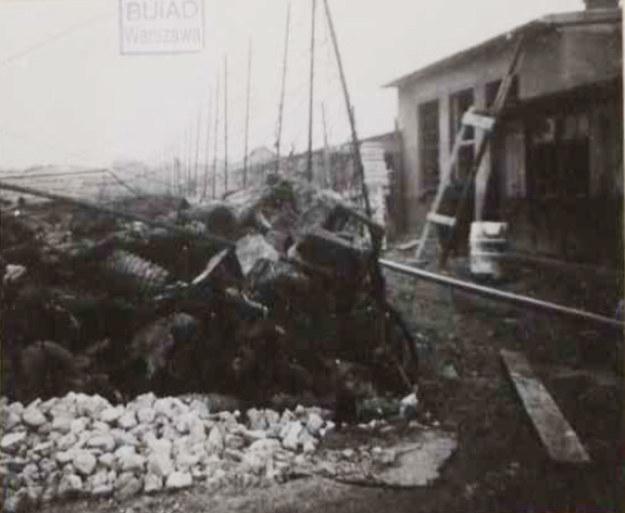 """Fotografia wykonana przez członków Komisji Badania Zbrodni Hitlerowskich w Krakowie na terenie po zlikwidowanym podobozie """"Kabel"""" w 1945 r. /IPN"""