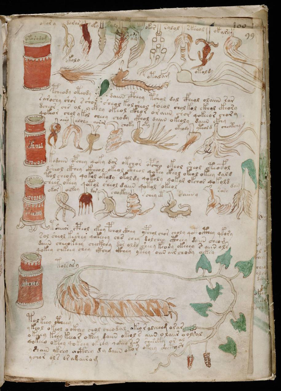 Fragment manuskryptu /Yale University /