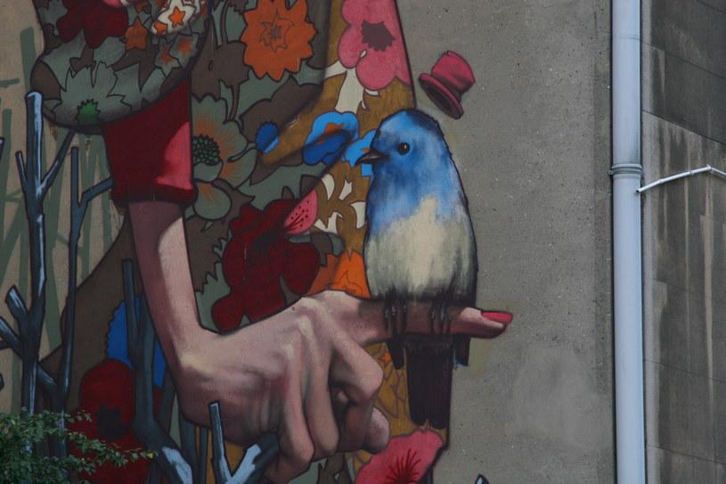 Fragment muralu przy ul Uniwersyteckiej 12 (autor: SAINER) /Ewelina Karpińska-Morek /INTERIA.PL