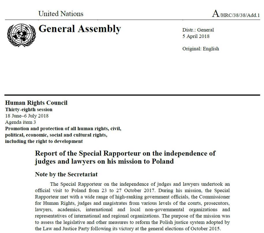 Fragment raportu specjalnego sprawozdawcy ONZ. /Zrzut ekranu