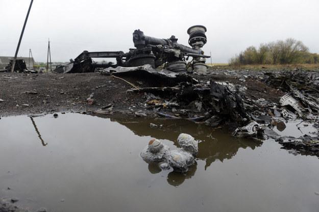 Fragment zestrzelonego MH17 /AFP