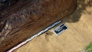 """Fragment żuchwy, odłamek kości i łuski. Odnaleziono szczątki """"Uskoka""""?"""