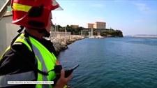 Francja: Ogromny wieloryb utknął w porcie