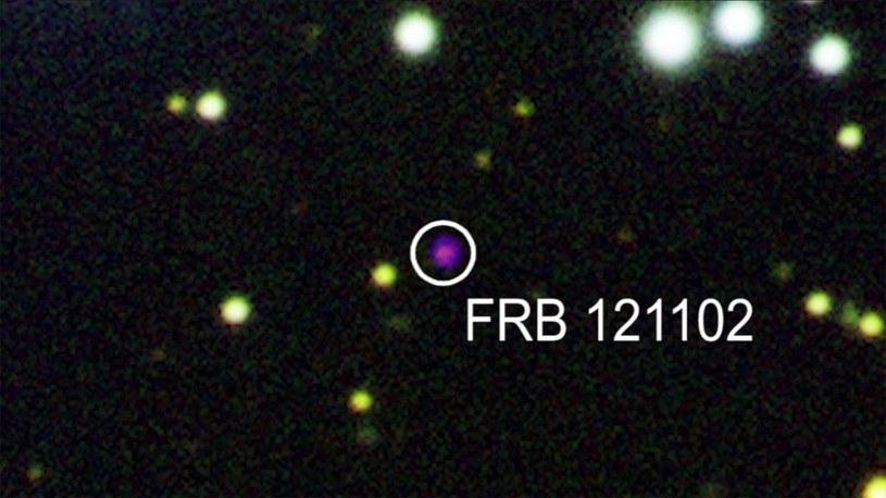 FRB 121102 - szybki rozbłysk radiowy, który się powtarza /materiały prasowe