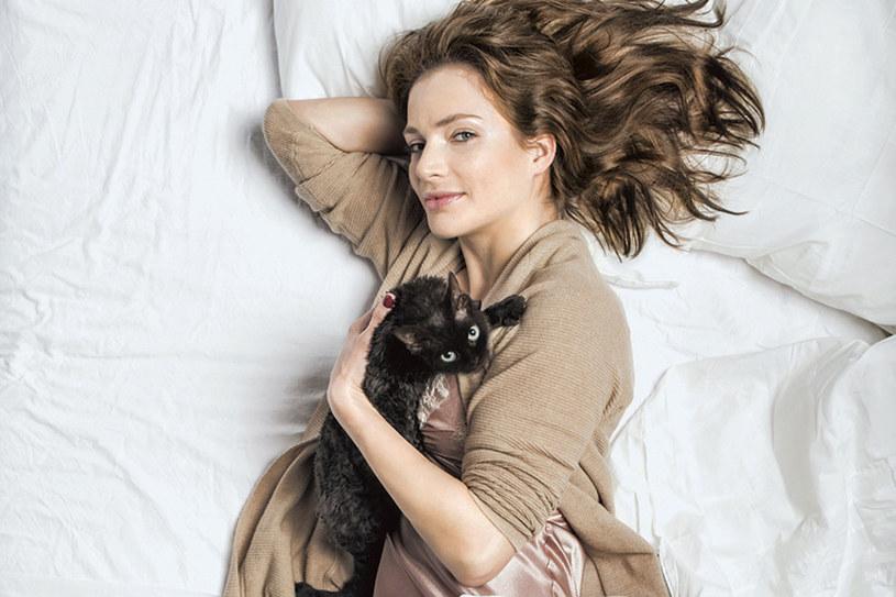 Fredzia, kotka rasy devon rex. To dzięki niej Anna Dereszowska została kociarą /Karol Grygoruk /Pani