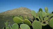 Fuerteventura - spokojna wyspa, czy mekka żądnych adrenaliny?