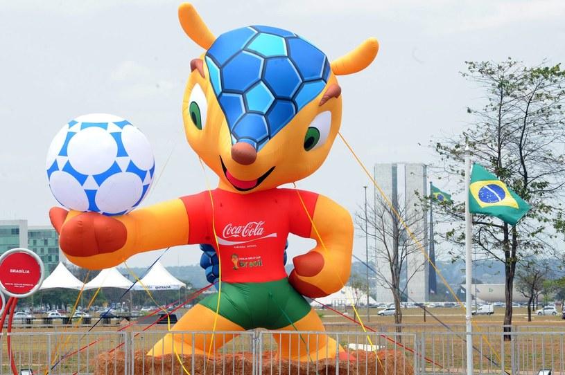 Fuleco - maskotka mundialu, który w 2014 roku odbędzie się w Brazylii /AFP