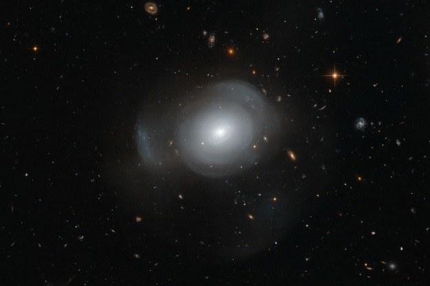 Galaktyka PGC 6240 /NASA