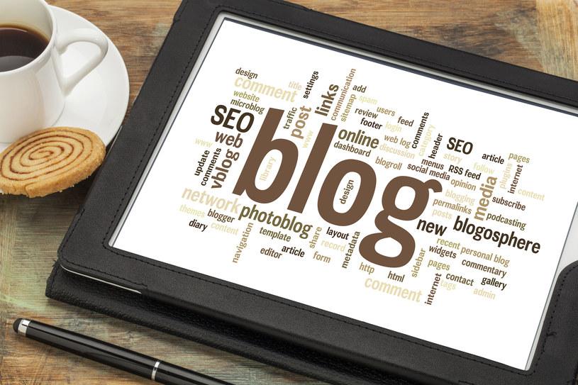 Gdy decydujesz się skomercjalizować swój blog, stajesz się już nie tylko pasjonatem, ale również biznesmenem /123RF/PICSEL