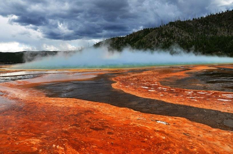 Gejzery występujące w Parku Narodowym Yellowstone są przejawem aktywności kaldery wulkanicznej, znajdującej się pod powierzchnią ziemi. /123RF/PICSEL