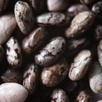 GIS ostrzega przed nasionami chia! W dużych ilościach mogą być niebezpieczne