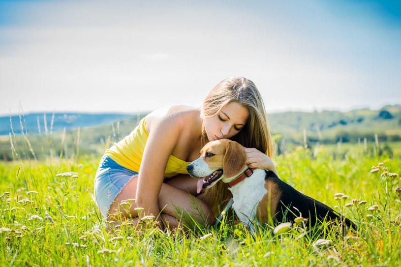 Glistą możesz się zarazić całując psa /©123RF/PICSEL