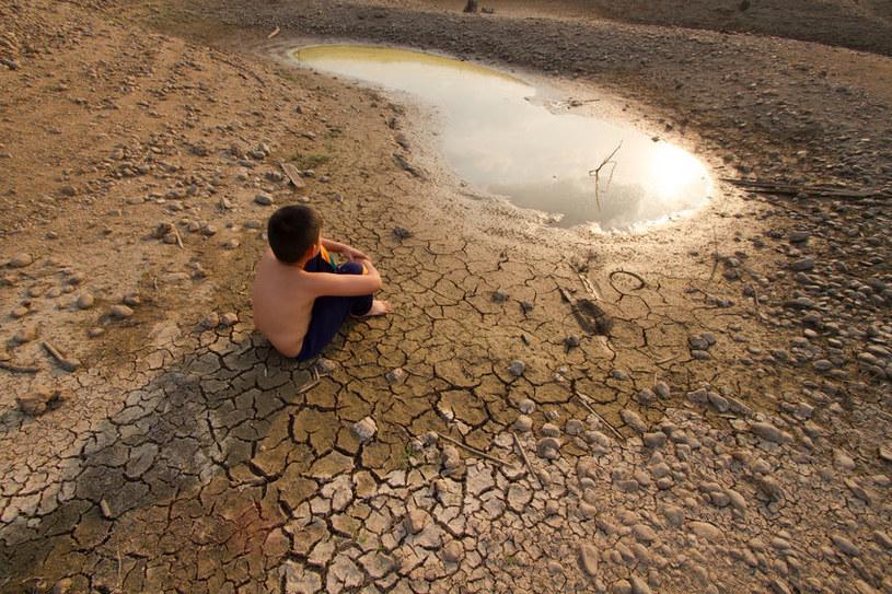 Globalne ocieplenie zwiększa ryzyko zakażenia pasożytami /123RF/PICSEL