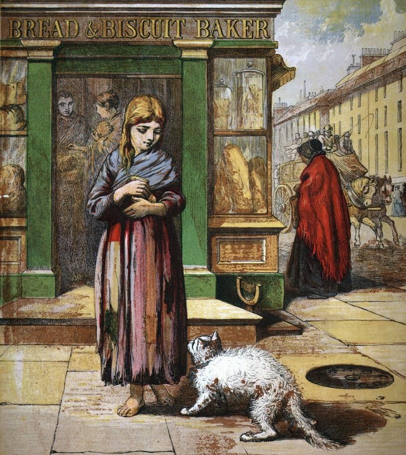 Głodny kot zwraca się z prośbą o pomoc do dziewczyny wychodzącej z piekarni, 1850 rok /Getty Images/Flash Press Media