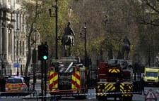 Golas na pomniku w Londynie [ZDJĘCIA]