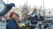 Gołębie dewastują zabytki Wenecji