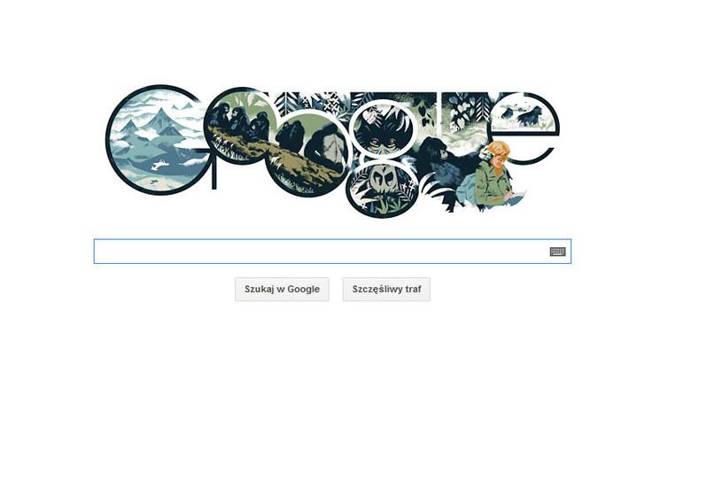 Google przypomina postać Dian Fossey /materiały prasowe