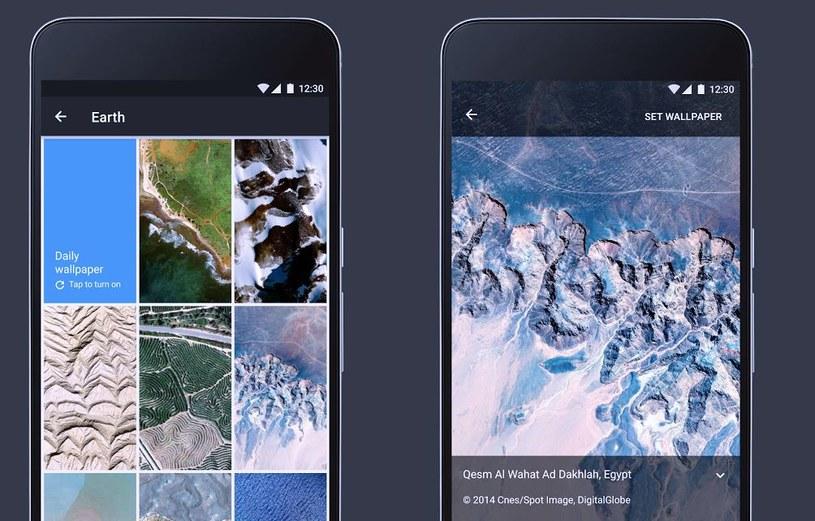 Google Tapety to bardzo przydatna aplikacja /materiały prasowe