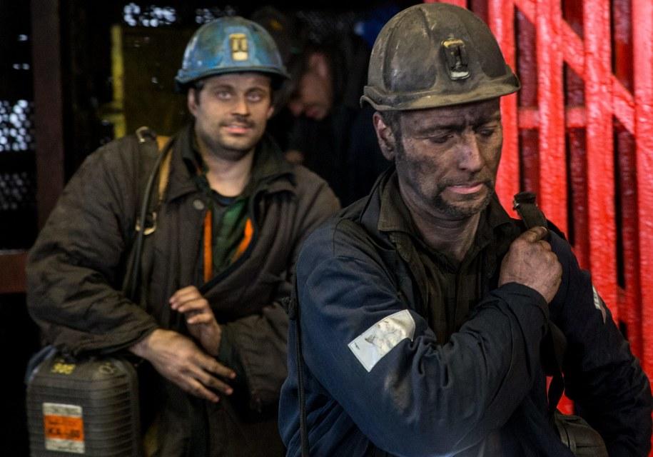 Górnicy z kopalni Mysłowice /Andrzej Grygiel /PAP