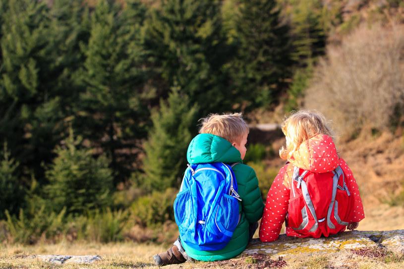 Górską wycieczkę z dziećmi trzeba dobrze zaplanować /123RF/PICSEL