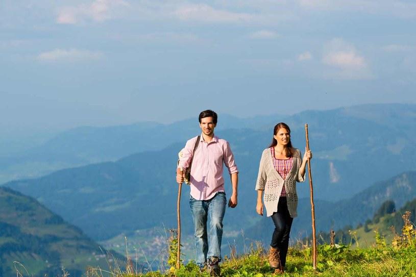 Gospodarstwa agroturystyczne są położone w najpiękniejszych regionach Austrii /123RF/PICSEL