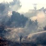 Grecja: Płoną lasy na północ od Aten