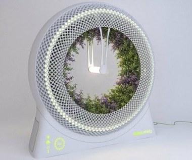 Green Wheel - kosmiczny ogród w domu