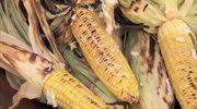Grillowana kukurydza z masłem czosnkowym