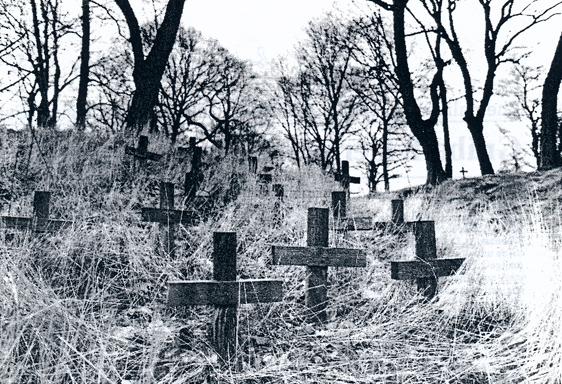Groby bezimiennych robotników i robotnic przymusowych w Brunszwiku. Na cmentarzu pochowanych jest też około 150 polskich niemowląt. źródło: Porta Polonica (Dokumentacja Henryka Nazarczuka)* /