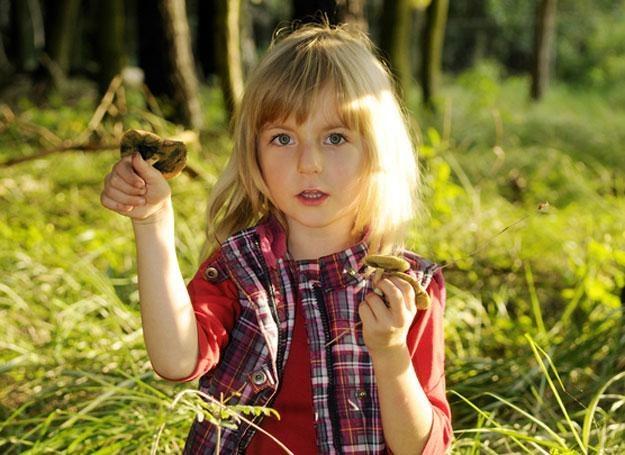 Grzybów nie należy podawać dzieciom przed 5. rokiem życia /© Panthermedia