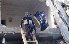 """""""Guardian"""": Bojownicy z Państwa Islamskiego przechodzą do Al-Kaidy"""