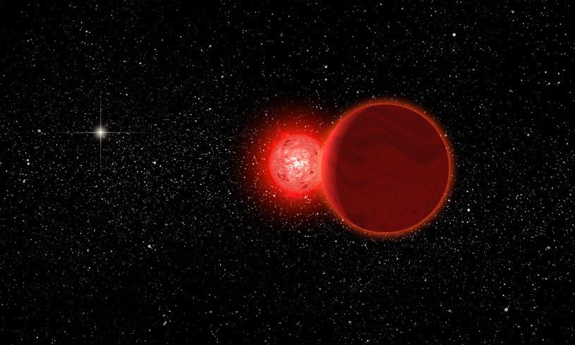 Gwiazda Scholza minęła Słońce o odległość zaledwie 0,8 roku świetlnego (Fot. University of Rochester) /materiały prasowe