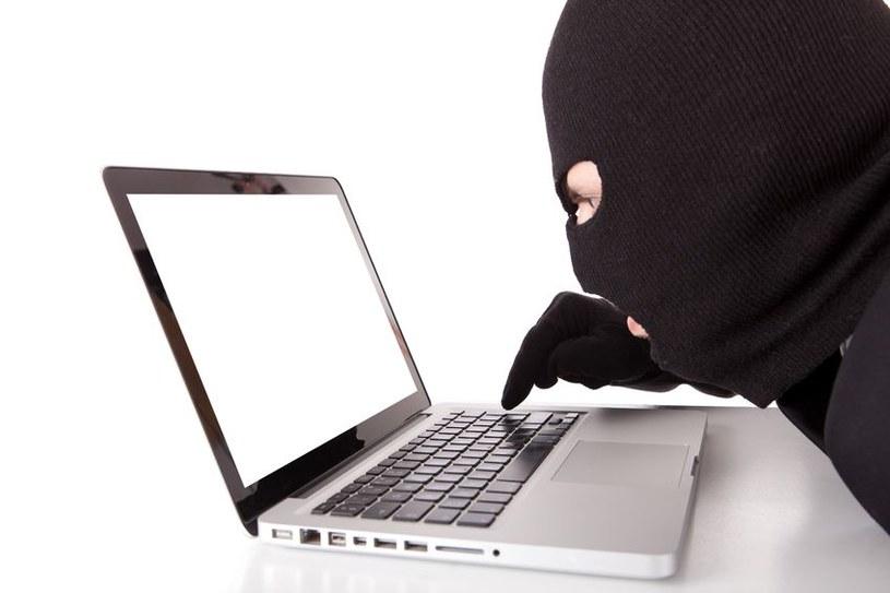 Hakerzy atakują wszystkich i dużo na tym zarabiają /123RF/PICSEL