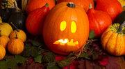 Halloweenowa dynia. Jak ją zrobić?
