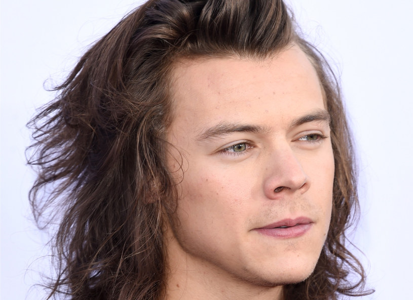 Harry Styles /Getty Images