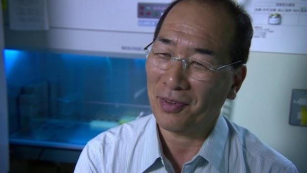 Hiro Nakauchi wierzy, że hodowanie ludzkich narządów w ciałach świń wkrótce będzie powszechne /YouTube